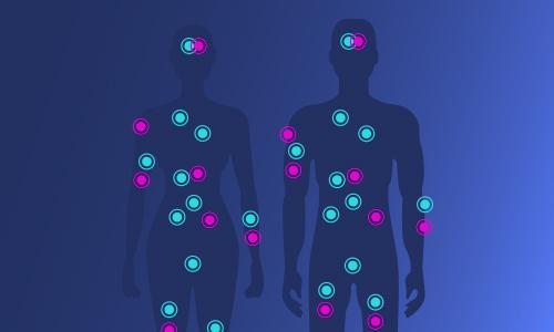 BIOVEA hat jetzt CBD! Möglichkeiten zur Unterstützung Ihres Endocannabinoid-Systems